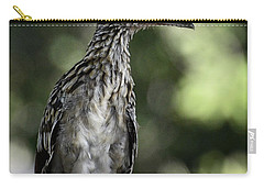 Greater Roadrunner  Carry-all Pouch by Saija  Lehtonen