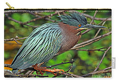 Green Heron Breeding Colors Carry-all Pouch