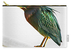 Green Heron In Scottsdale Carry-all Pouch