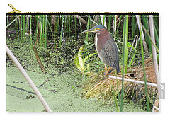 Carry-all Pouch featuring the pyrography Green Heron by Ron Davidson