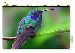 Green Violet Ear Hummingbird Carry-all Pouch by Myrna Bradshaw