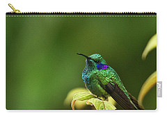 Green Violetear Hummingbird Carry-all Pouch