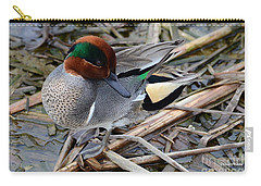 Carry-all Pouch featuring the photograph Green-winged Teal by Debra Martz