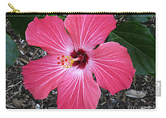 Carry-all Pouch featuring the photograph Greetings From Florida by Oksana Semenchenko
