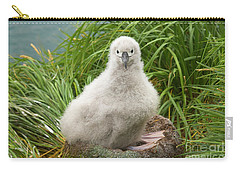 Grey-headed Albatross Chick Carry-all Pouch