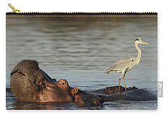 Grey Heron On Hippopotamus Kruger Np Carry-all Pouch by Perry de Graaf