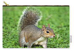 Carry-all Pouch featuring the photograph Grey Squirrel by Antonio Scarpi
