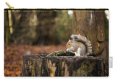 Grey Squirrel On A Stump Carry-all Pouch by Spikey Mouse Photography