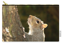 Carry-all Pouch featuring the digital art Grey Squirrel by Ron Harpham