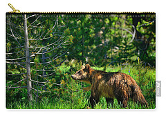 Carry-all Pouch featuring the photograph Grizzly Bear 760 by Greg Norrell