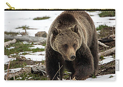 Carry-all Pouch featuring the photograph Grizzly Bear In Spring by Jack Bell