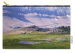 Carry-all Pouch featuring the photograph Grizzly Meadows by Marianne NANA Betts