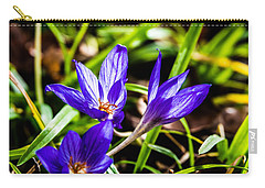 Carry-all Pouch featuring the photograph Hocus Crocus by Dee Dee  Whittle