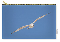 Gull In Flight - 2 Carry-all Pouch