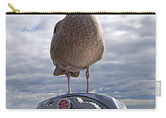 Carry-all Pouch featuring the photograph Gull by Mim White