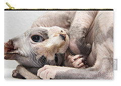 Hairless Cat Carry-all Pouch