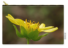 Carry-all Pouch featuring the photograph Hairy Leafcup by Paul Rebmann