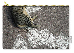 Handicat Parking Carry-all Pouch