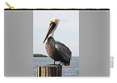 Handsome Brown Pelican Carry-all Pouch by Carol Groenen