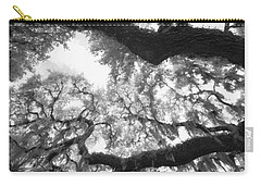 Carry-all Pouch featuring the photograph Hanging Moss by Bradley R Youngberg