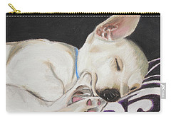 Hanks Sleeping Carry-all Pouch by Jeanne Fischer