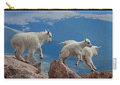 Happy Landing Carry-all Pouch by Jim Garrison