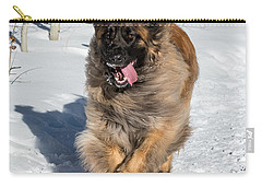 Happy Leonberger Winter Trail Running Carry-all Pouch