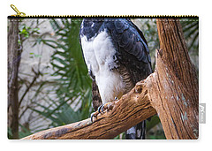Carry-all Pouch featuring the photograph Harpy Eagle by Ken Stanback