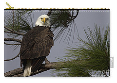 Harriet The Bald Eagle Carry-all Pouch by Meg Rousher