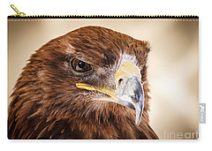 Harris Hawk Watching Carry-all Pouch