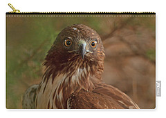 Hawk Close Encounter Carry-all Pouch