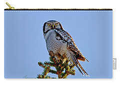 Hawk Owl Square Carry-all Pouch