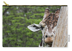 Carry-all Pouch featuring the photograph Hay Not Just For Horses by Judy Whitton