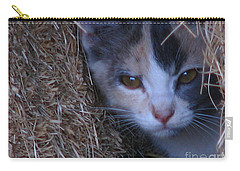 Haystack Cat Carry-all Pouch