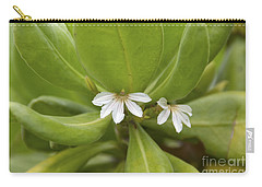 He Loves Me He Loves Me Not Carry-all Pouch