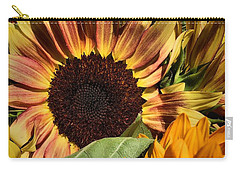 Here Comes The Sun Carry-all Pouch by Robert McCubbin