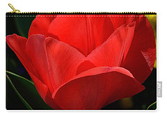 Carry-all Pouch featuring the photograph Here's My Heart by Nava Thompson
