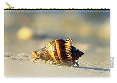 Hermit Crab  Carry-all Pouch by Debra Forand