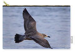 Carry-all Pouch featuring the photograph Herring Gull In Flight Photo by Meg Rousher
