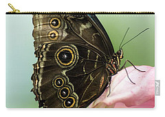 Carry-all Pouch featuring the photograph Hidden Beauty Of The Butterfly by Debbie Green
