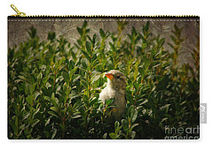 Carry-all Pouch featuring the photograph Hide And Seek by Mariola Bitner
