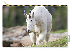 Carry-all Pouch featuring the photograph High Country Mountain Goat by Jack Bell