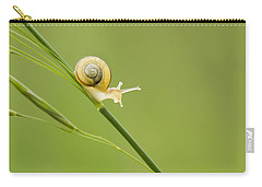High Speed Snail Carry-all Pouch