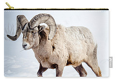 Big Horns On This Big Horn Sheep Carry-all Pouch