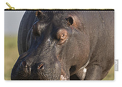 Hippopotamus Bull Charging Botswana Carry-all Pouch by Vincent Grafhorst