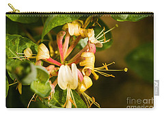 Carry-all Pouch featuring the photograph Honeysuckle by Liz  Alderdice