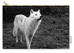 Carry-all Pouch featuring the photograph Hopeful by Vicki Spindler