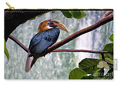 Carry-all Pouch featuring the photograph Hornbill In Paradise by Adam Olsen