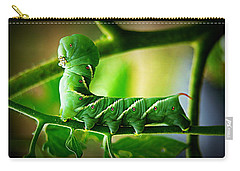 Hornworm Carry-all Pouch by Paul  Wilford