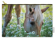 Horse And Daisies Carry-all Pouch by Paul Freidlund